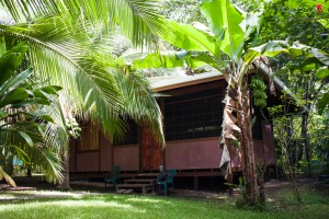 Jungle Cabin, Cabo Matapalo, Costa Rica
